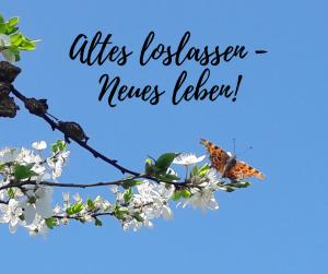 Agnes Pfeffer: Körper- und Bewusstseinsarbeit Wien